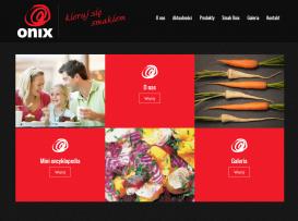 Strona www firmy Onix